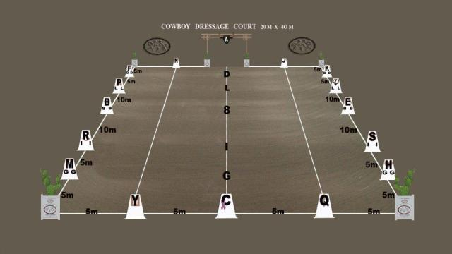 _C Dressage arena with gate (2)