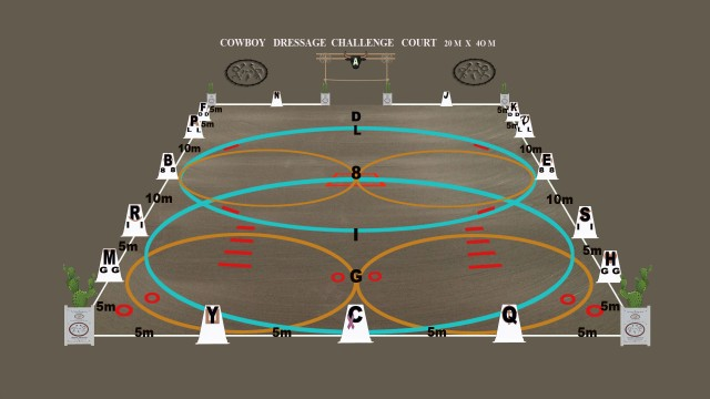 CD challenge court