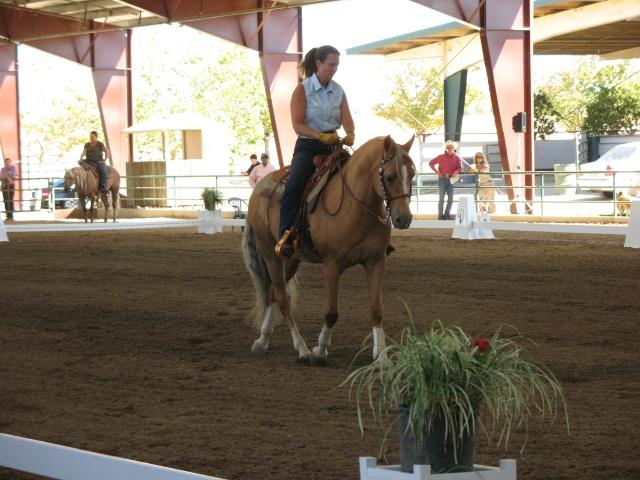 Debbie rides demo4