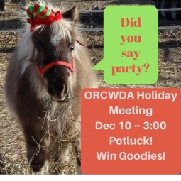 orcwda-holiday-party
